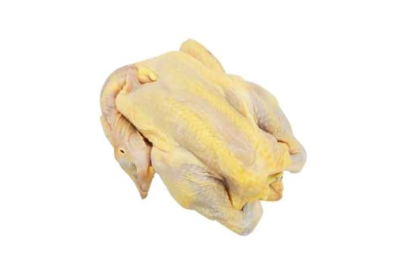 Fresh Kampong Chicken