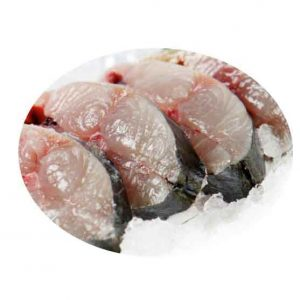 Fresh Batang Fish Singapore